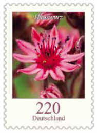 220 c Blume
